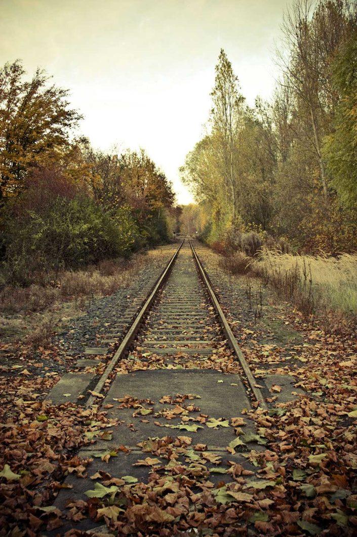 Via del tren en otoño
