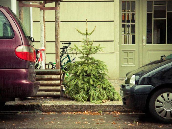 Árbol de Navidad tirado en el suelo
