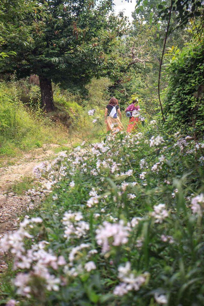 Mujeres paseando por el bosque
